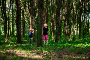 two boys playing in woods