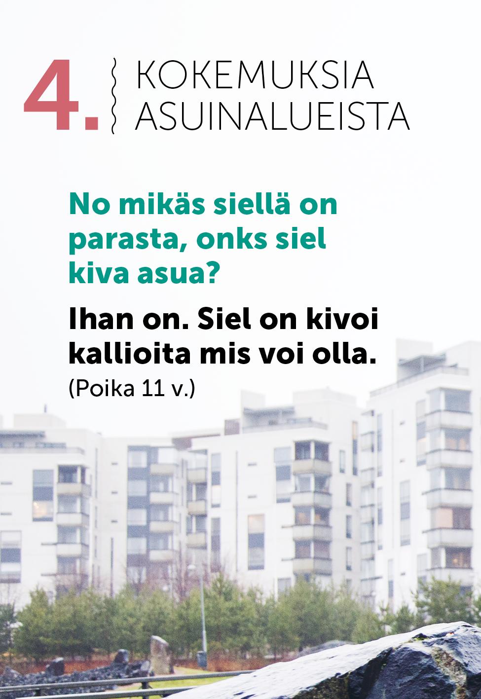 150330_NuHa_raportti_portfolioon_6